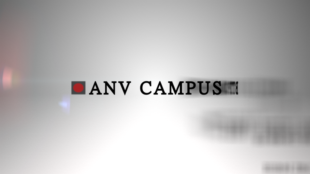 ANV 2013 | Motion Graphics