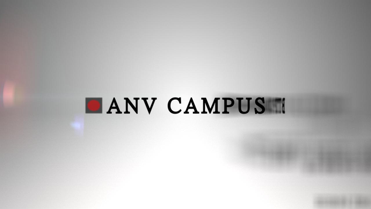 ANV 2013  |  Motion Graphics