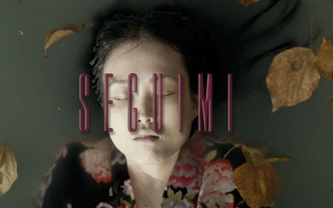 Seguimi | VFX & Post-production